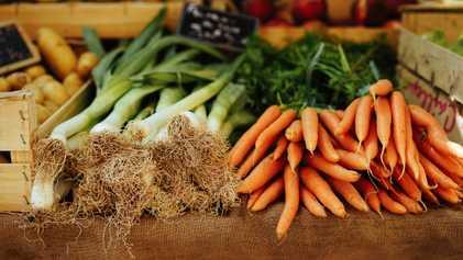 Gemüse-Genossen: Das Prinzip der solidarischen Landwirtschaft