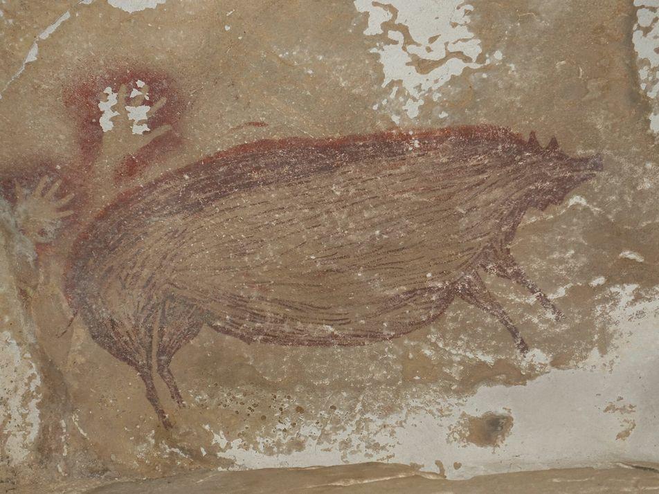45.500 Jahre altes Schwein ist die älteste Figurenmalerei der Welt
