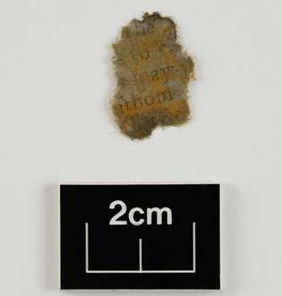 Nachdem dieses Papierfragment aus dem Kanonenrohr entnommen, gesäubert und getrocknet wurde, ließ sich darauf Text erkennen. ...