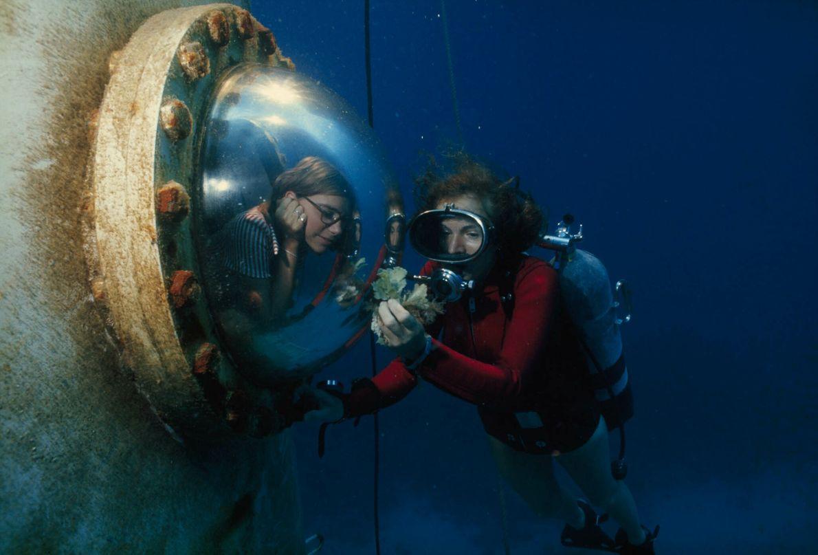 Taucherin an einem Glasfenster eines Unterwasserhabitats