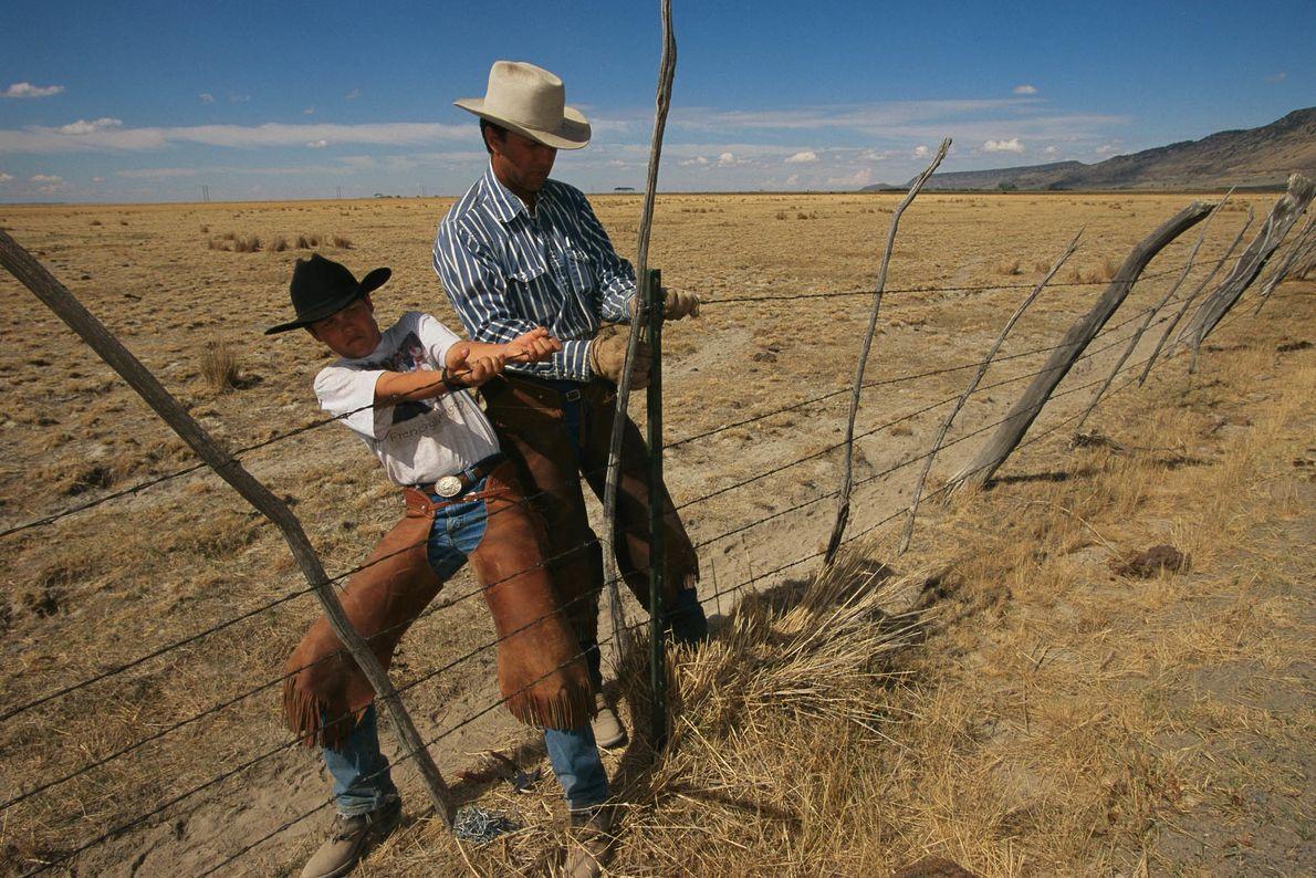 Zaunreparatur auf einer Rinderfarm