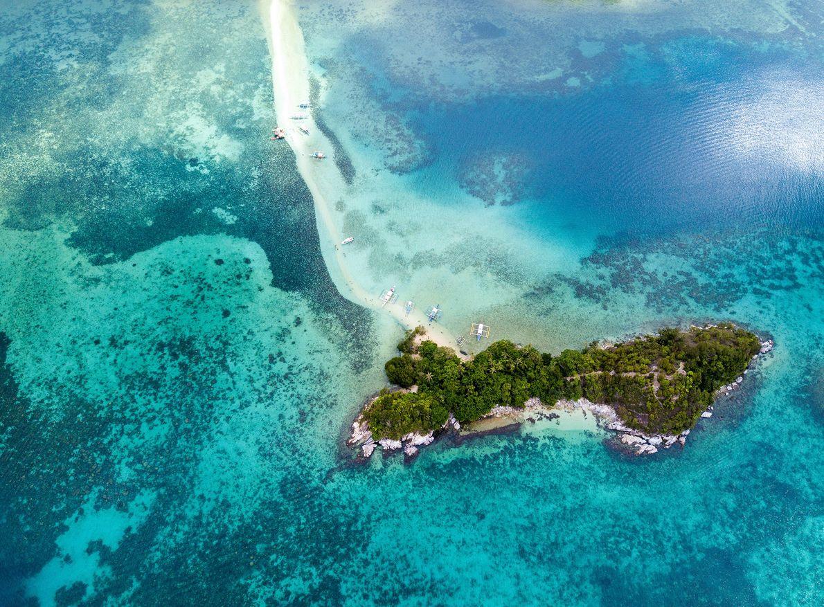 Eine Insel mit Bäumen inmitten des blauen Meeres