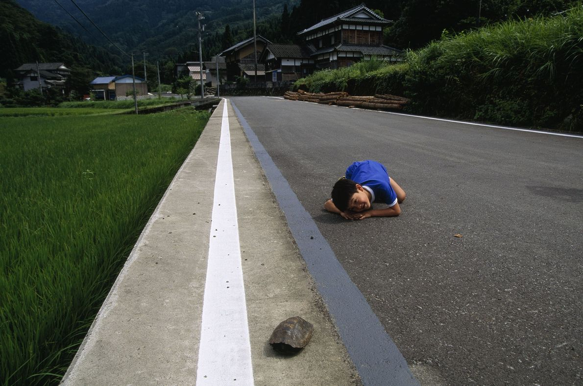 Junge und Schildkröte auf Honshu, Japan