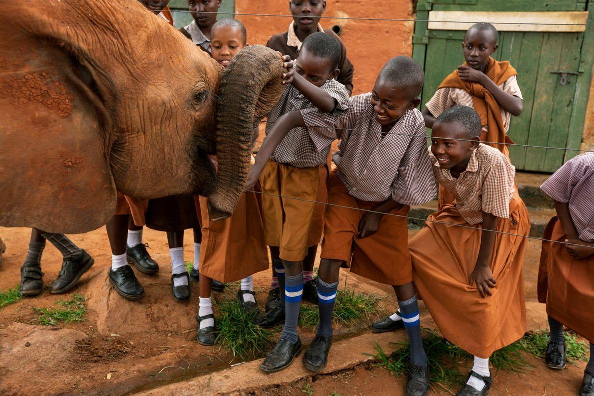 Elefantenwaisen im Tsavo-East-Nationalpark in Kenia