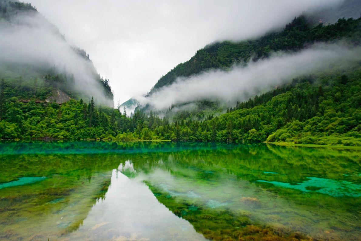 Morgennebel im Naturschutzgebiet Jiuzhaigou