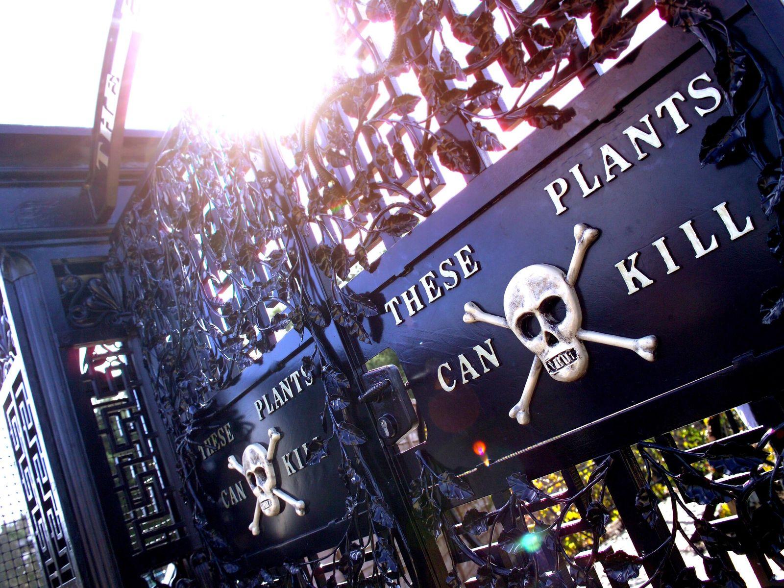 Das Tor zum Poison Garden