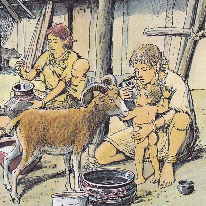 Babyfläschchen aus neolithischen Siedlungen