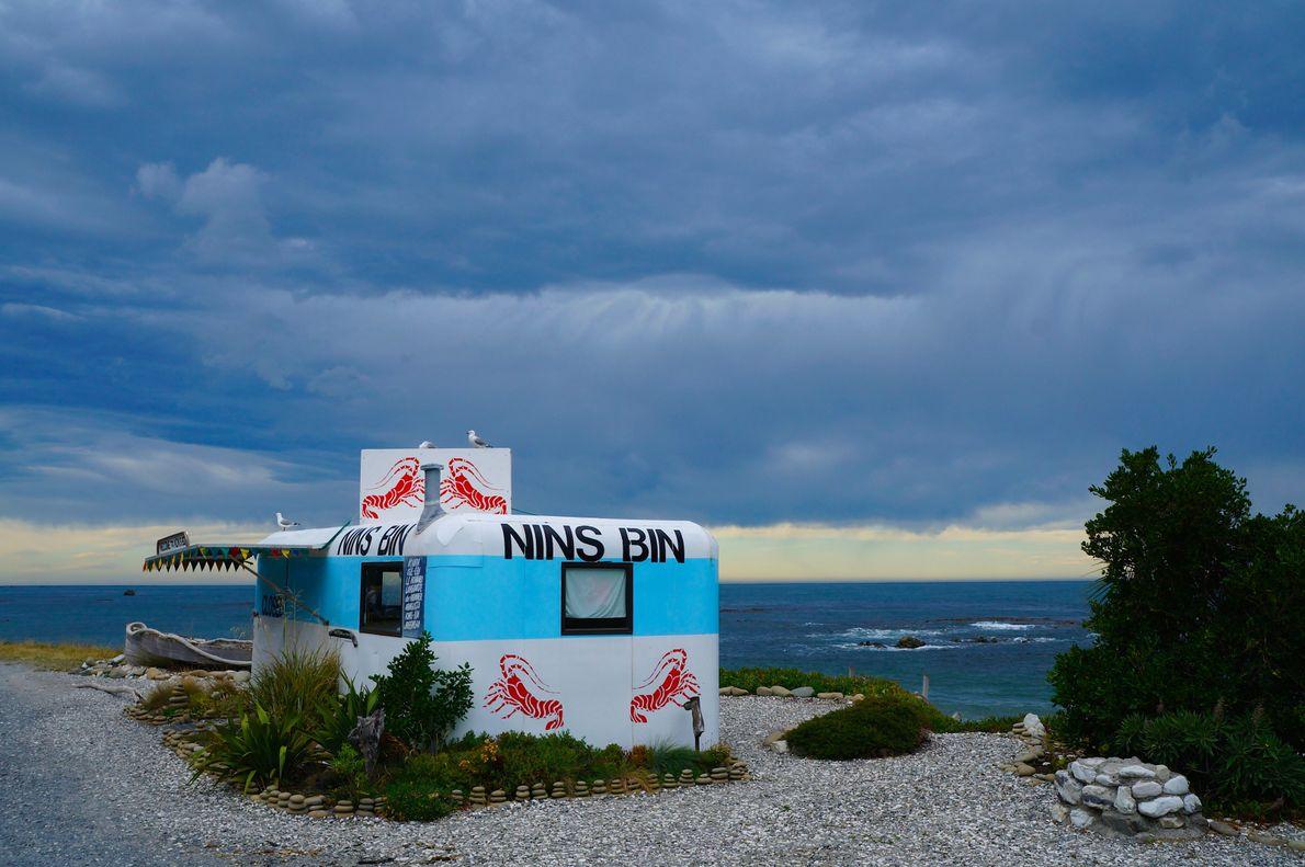 Nin's Bin hat sich an Neuseelands Küsten zu einer festen Größe etabliert, wie der Your Shot-Fotograf ...