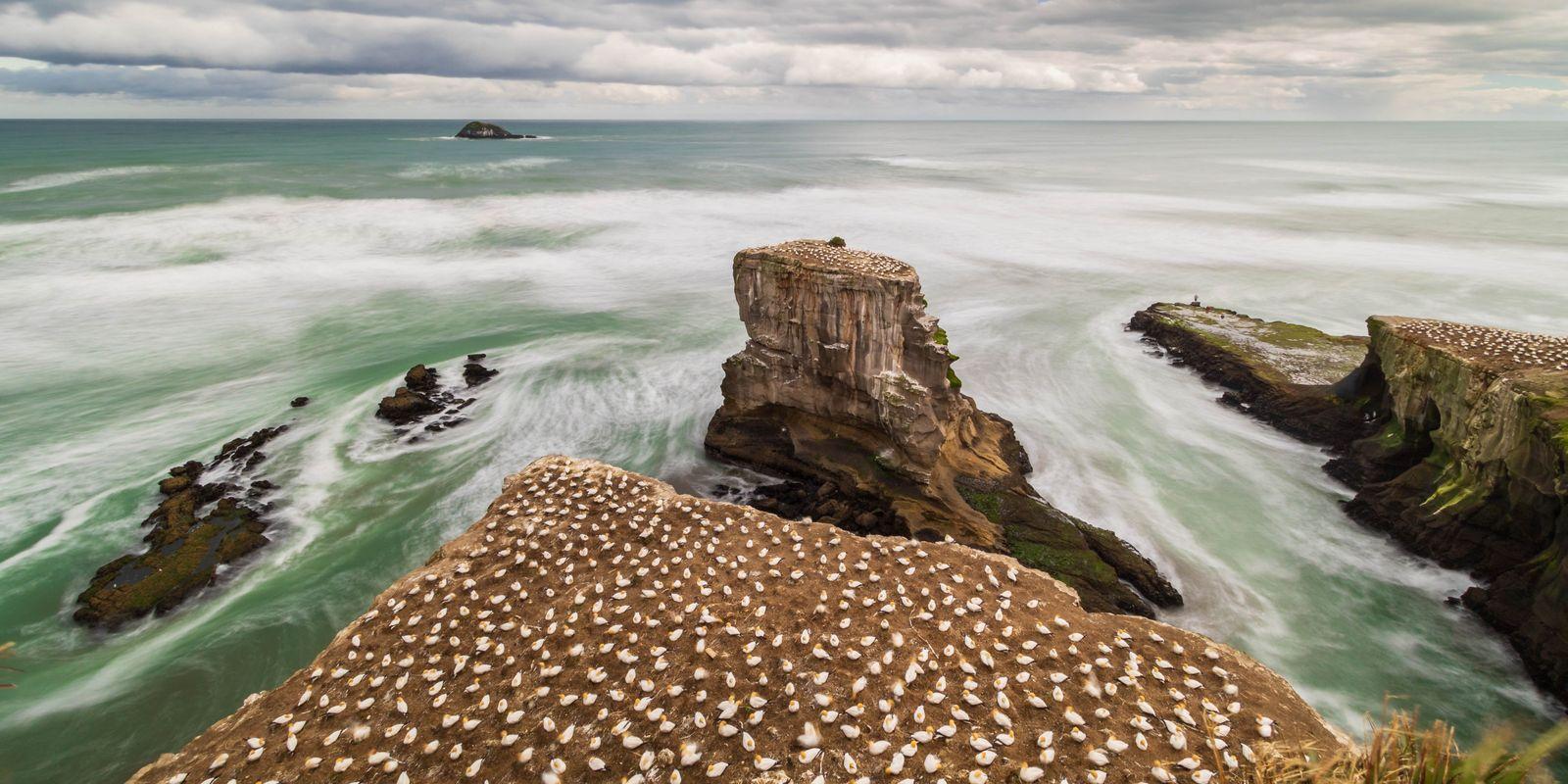 Galerie: Mein Neuseeland