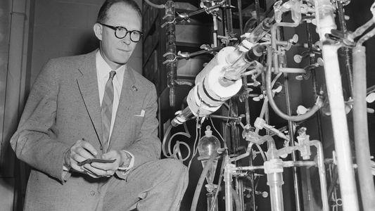 Radiokarbonmethode: Wie datiert man archäologische Funde?
