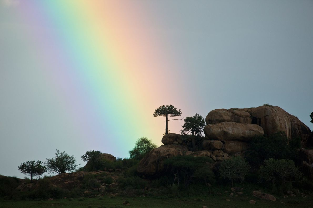 CHYULU-HILLS-NATIONALPARK, KENIA
