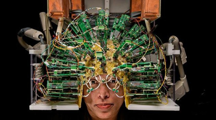 Reise in unser Gehirn