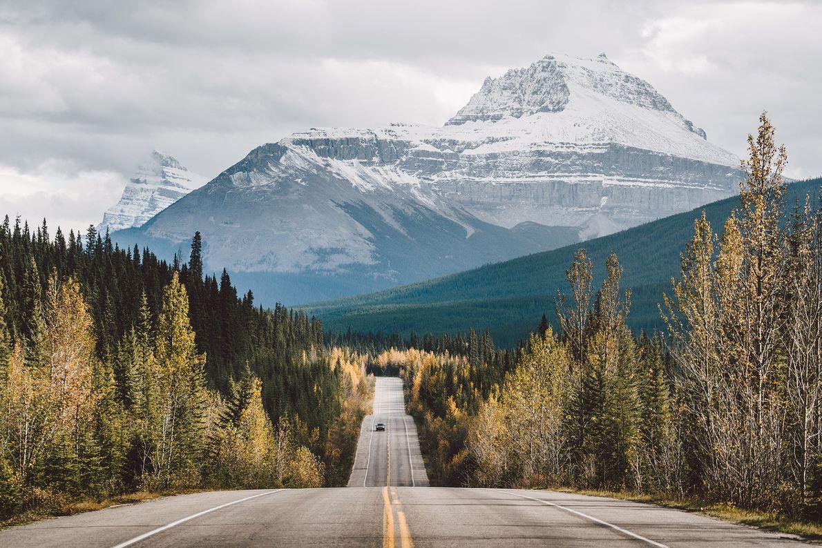Der Icefields Parkway verbindet Lake Louise mit dem Jasper Nationalpark.