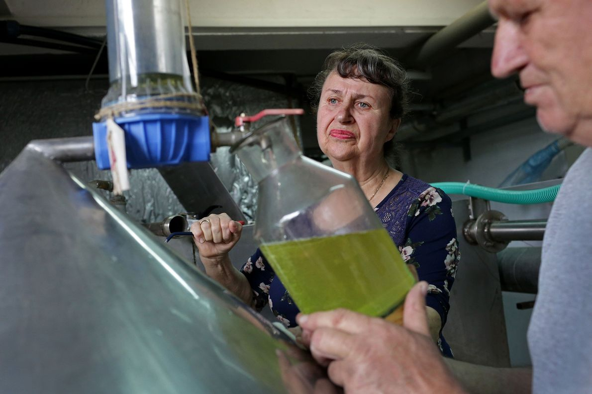 Elena Todorova und ihr Mann Marin – die Leiter der Lema-Destillerie –füllen während des Destillationsprozesses Rosenöl ...
