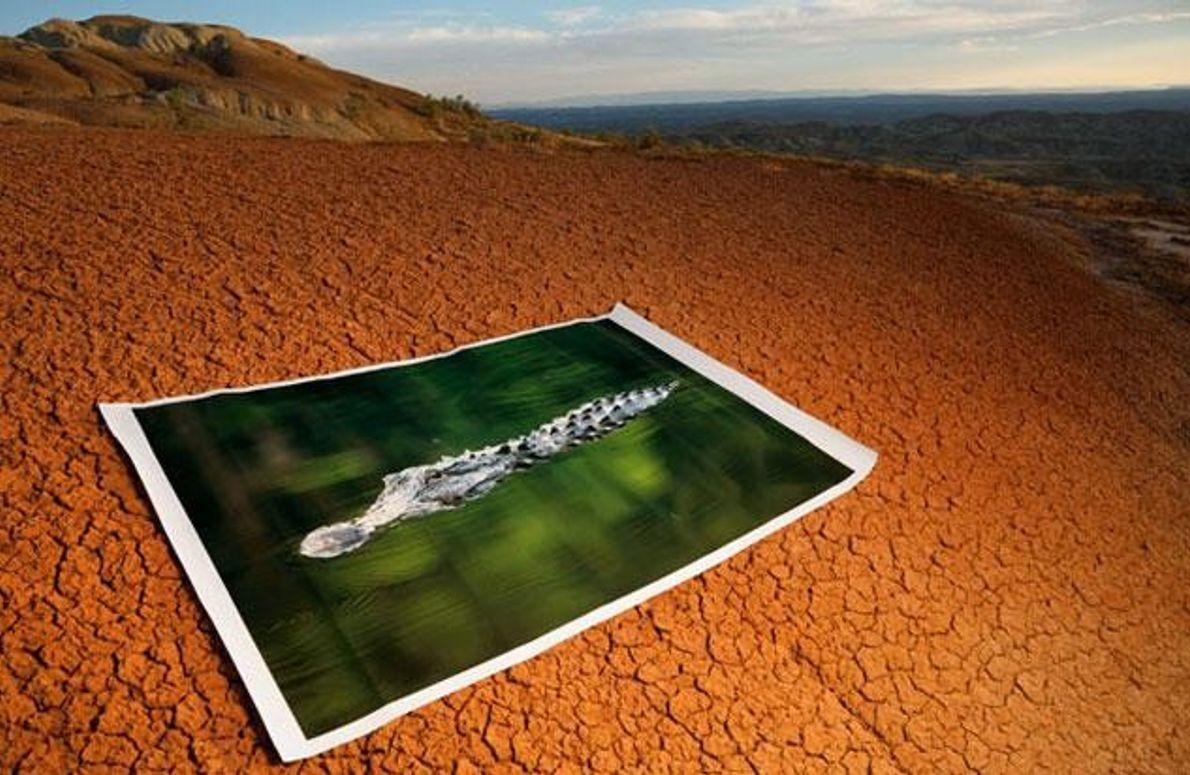 Rostrotes oxidiertes Gestein im Bighorn Basin...