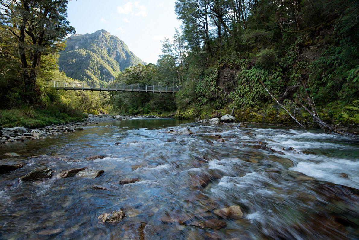 Strände, Wald und Berge: 9 Wanderrouten in Neuseeland