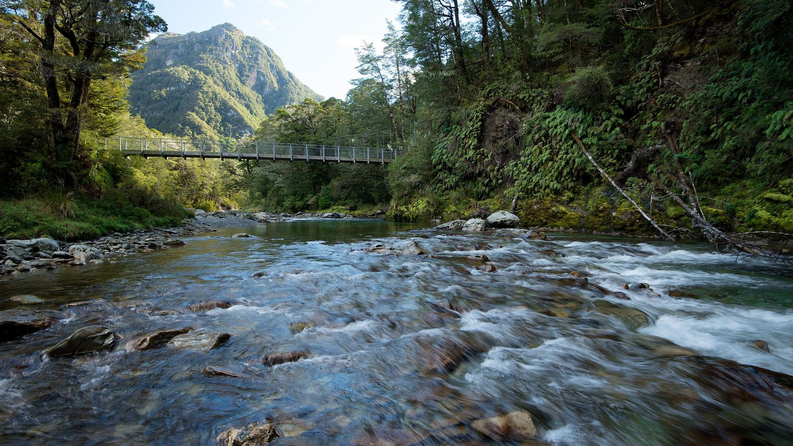 Der Routeburn Track befindet sich auf der Südinsel und führt Besucher über diese Hängebrücke in die ...