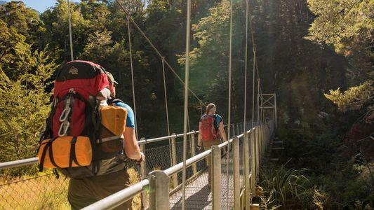 Galerie: Strände, Wald und Berge: 9 Wanderrouten in Neuseeland
