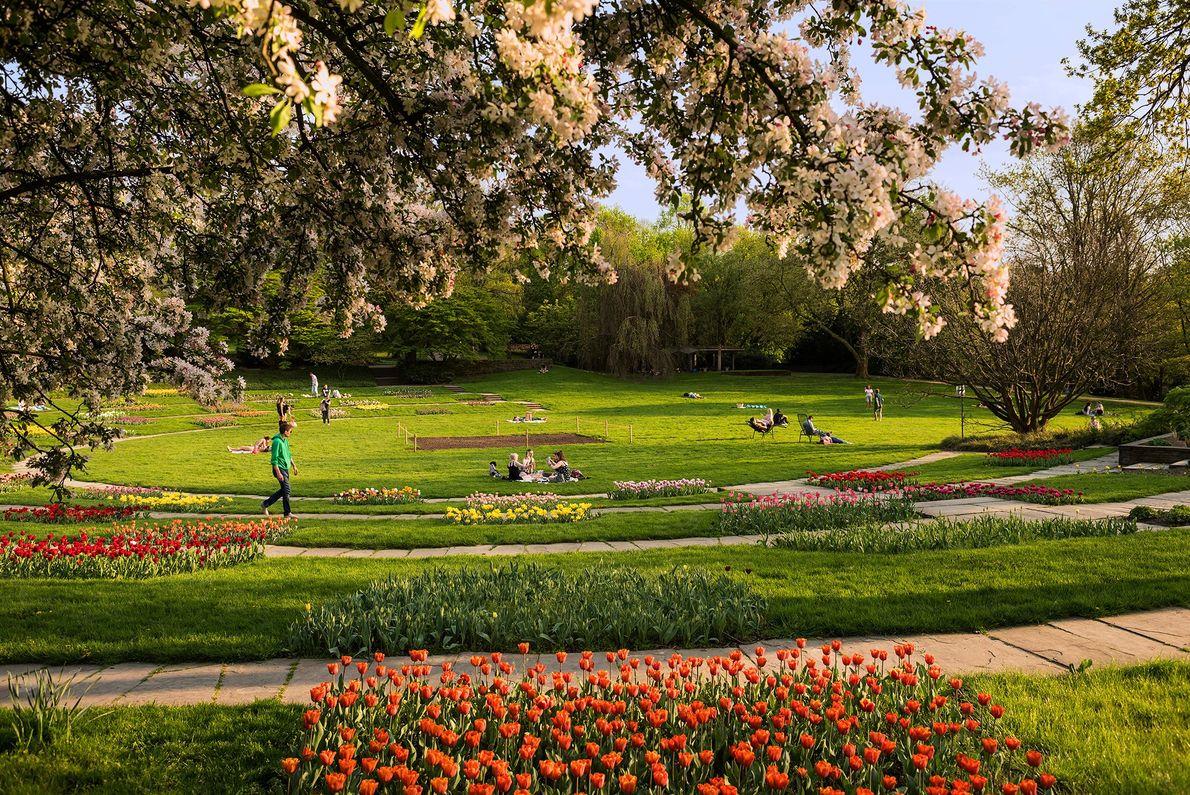 Im Grugapark in Essen gibt es einen botanischen Garten, einen Zoo, Spielplätze und Skulpturen.