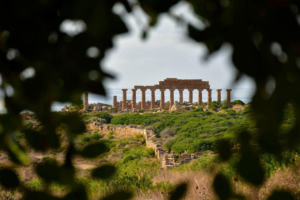 Dichtes Laub umrahmt die Tempelruinen von Selinunt an der Südküste Siziliens. Die Stadt wurde 650 v. ...