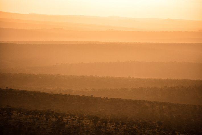 Über den Hügeln im Loisaba Conservancy im kenianischen County Laikipia geht die Sonne auf.