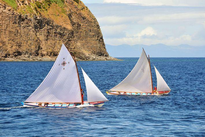 Walboote zwischen Faial und Pico