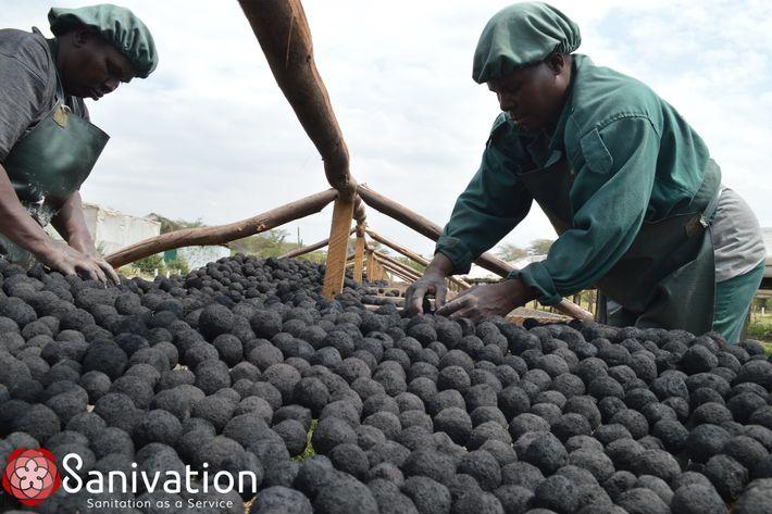 Sanivation Biomassebrennstoff