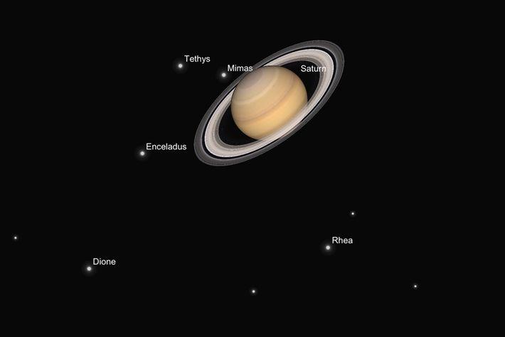 Eine Illustration zeigt, wie der Saturn und seine Monde Ende Juni durch ein Teleskop aussehen sollten.