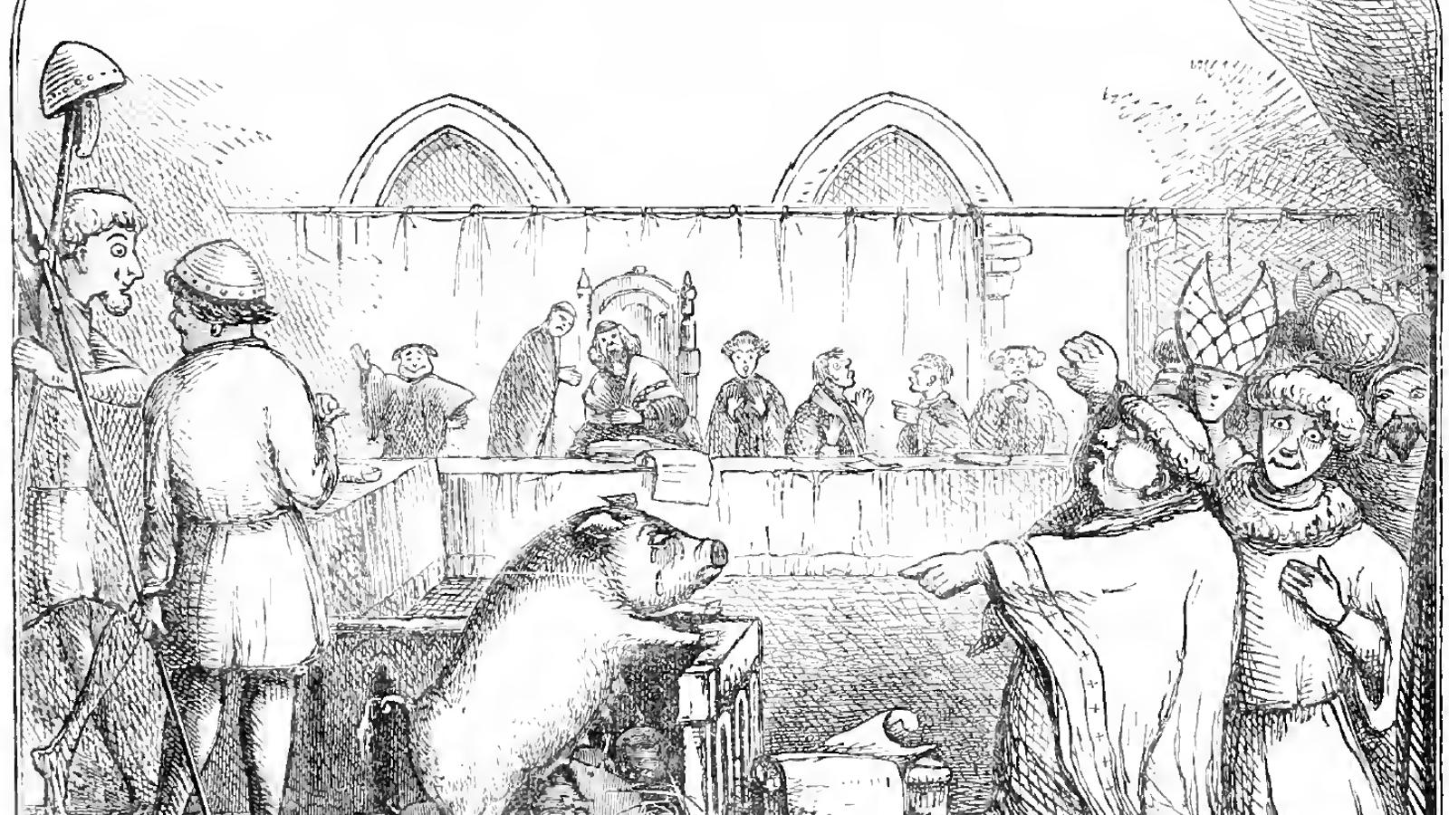 Zeichnung in Schwarz-Weiß: Eine Sau und ihre sechs Ferkel stehen vor Gericht