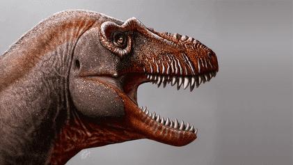 Bote des Todes: Kanadas neuer Tyrannosaurus