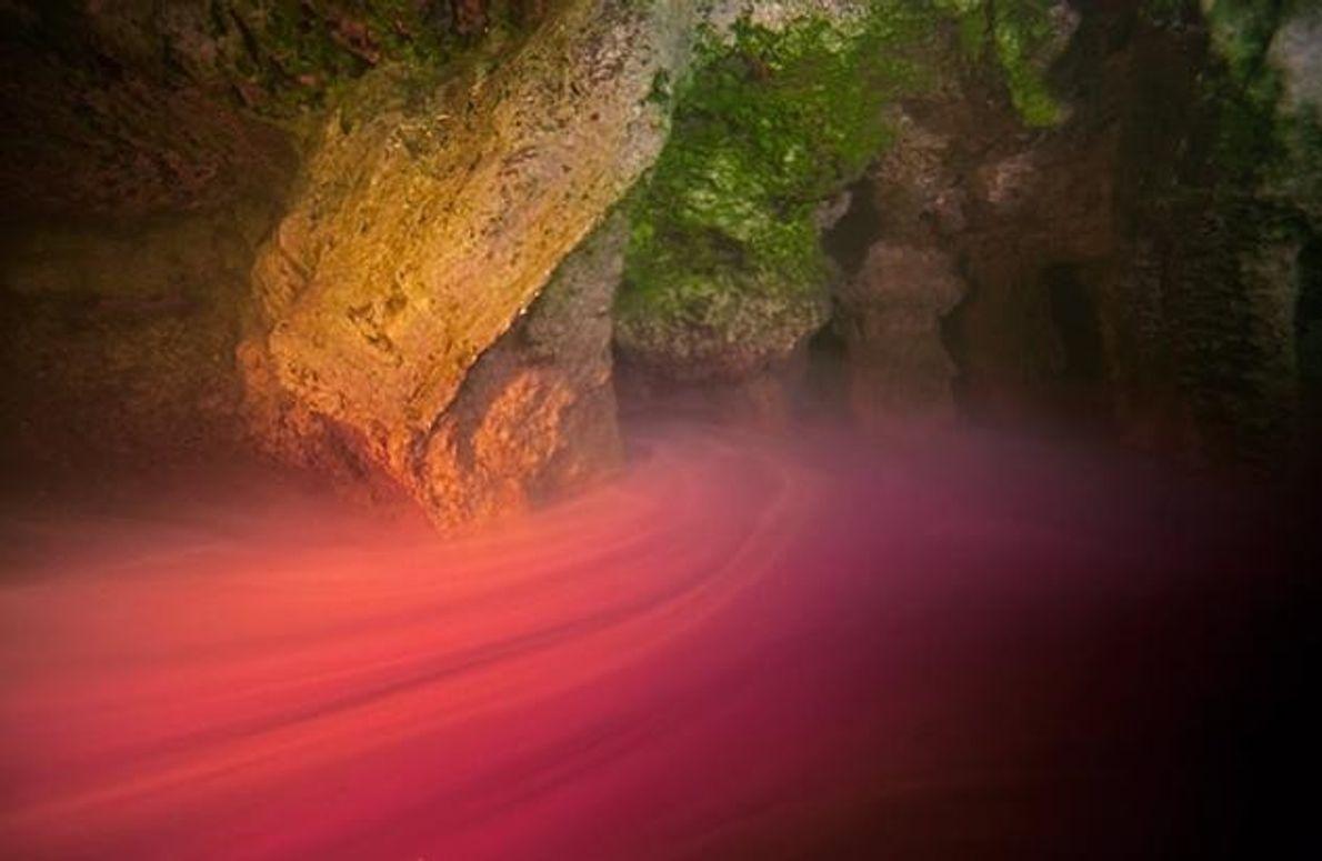 """In der """"Sawmill Sink"""" färben Bakterien in einer Tiefe von neun bis elf Metern das Wasser. …"""