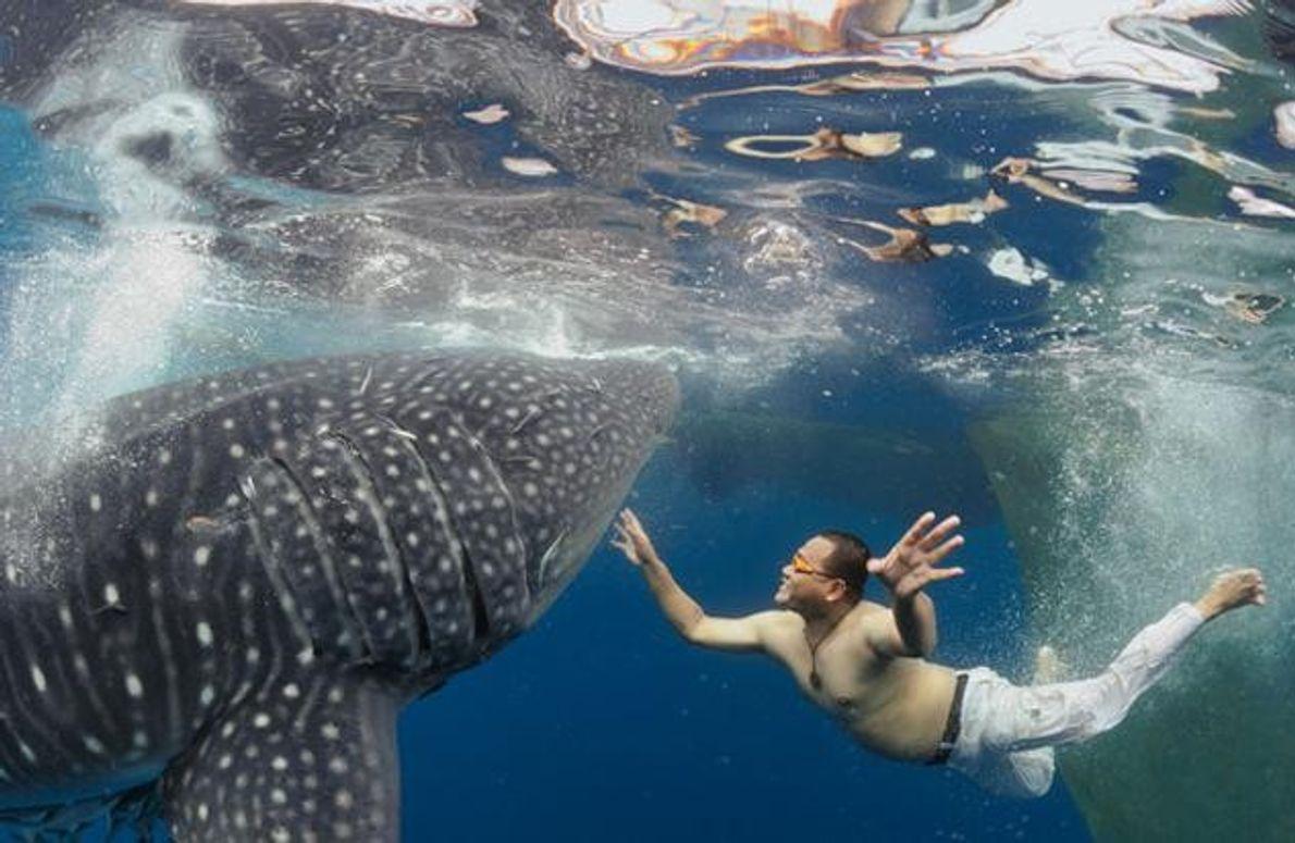 «Plötzlich sprang er einfach ins Wasser», erzählt der Fotograf Michael Aw. Er meint Sarmin Tangadji, den …