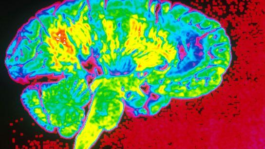 Menschen beurteilen Gefahren unter Berücksichtigung vieler verschiedener psychologischer Faktoren. Dies hat auch einen Effekt auf unseren ...