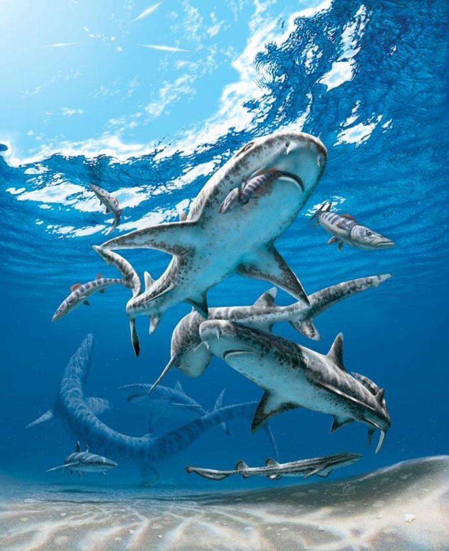 Prähistorische Haie, die sich von Meeresreptilien ernährten, verschwanden vor 66 Millionen Jahren, als ihre Beutetiere – ...