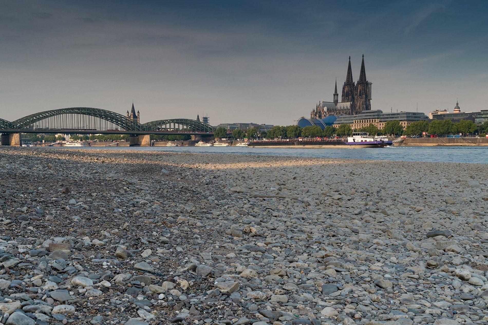 Niedrigwasser am Rhein in Köln.