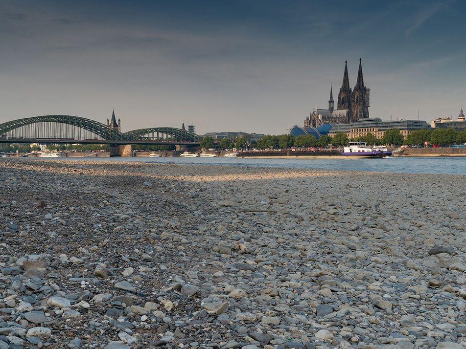 Rekordhitze und Dürre: Der Sommer 2019 war extrem