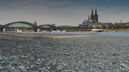 [BU] Niedrigwasser am Rhein in Köln. Nur sieben Prozent der deutschen Flüsse sind in einem guten ...