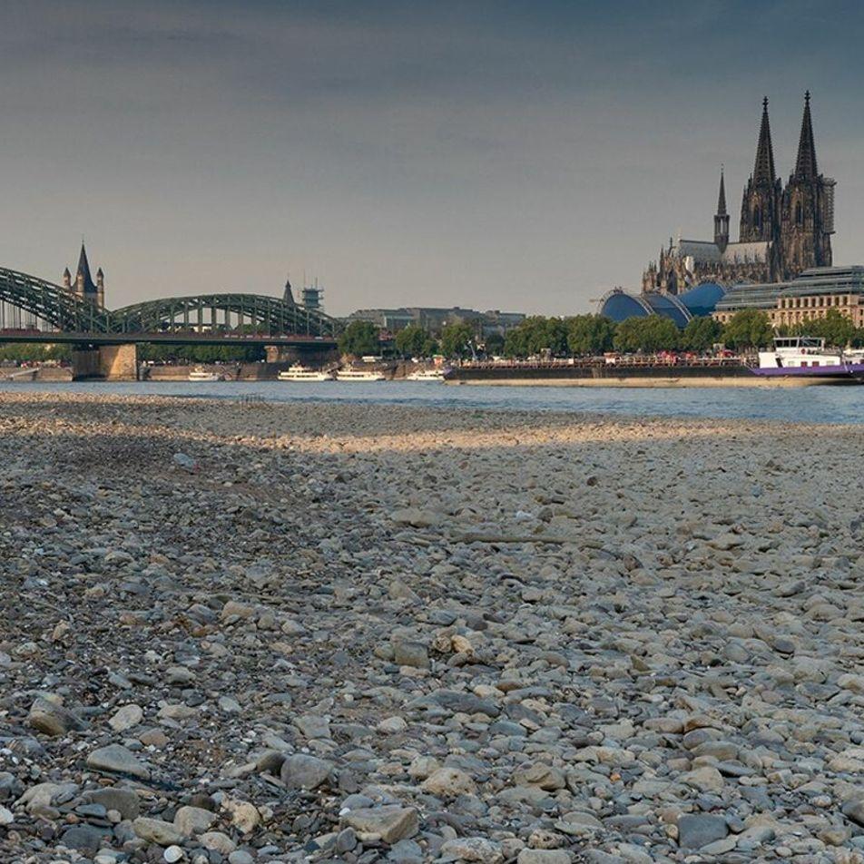 Wie geht es der Umwelt in Deutschland?