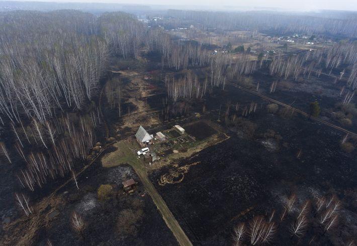 Die Gebäude dieser kleinen Gemeinde im südlichen Sibirien sind rußgeschwärzt. In der Region um Novosibirsk brennen ...