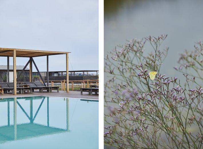 Links: Salzwasserbecken im Thalasso Lepa Vida. Rechts: Die Flora und Fauna der Salzgärten des Sečovlje Salina Nature ...
