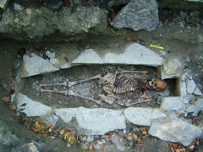 Die DNA eines weiblichen Skeletts – Spitzname: Kata – aus einer Wikingergrabstätte im schwedischen Varnhem wurde ...