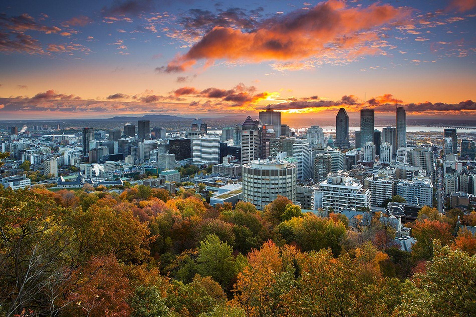 Die Skyline von Montréal leuchtet dramatisch im Sonnenuntergang. Blick vom Kondiaronk Lookout im Mount Royal Park.