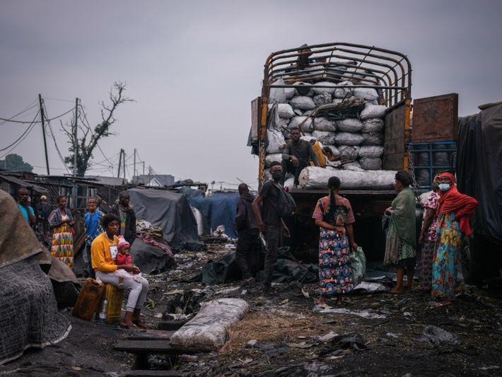 Das rasante Bevölkerungswachstum in der DRK führt zu einem Boom in der Holzkohle-Industrie, die in großen ...