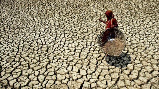 Bis 2100 könnten Teile Asiens zu heiß für menschliches Leben sein