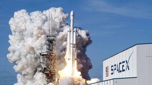 SpaceX: Milliardär will mit Künstlern zum Mond fliegen