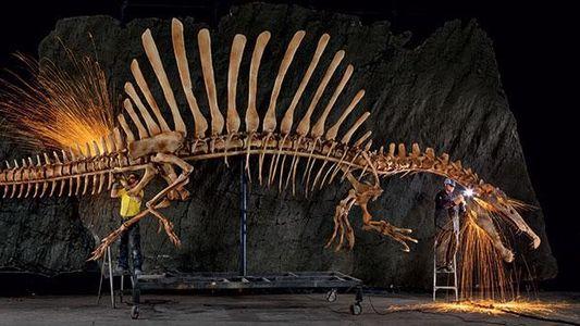 Spinosaurus – Mister Big