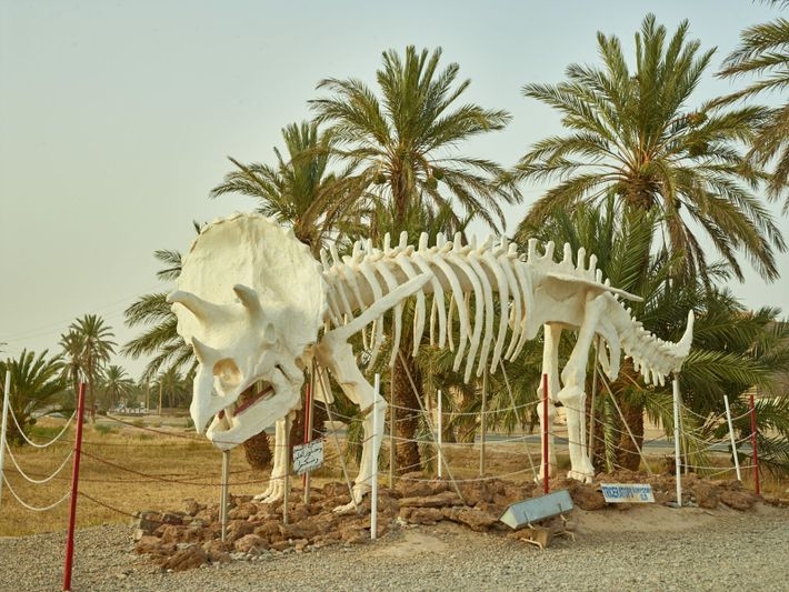 Statue eines Triceratops