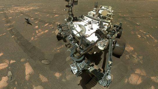 Zum ersten Mal ist Perseverance, dem Mars-Rover der NASA, die erfolgreiche Entnahme einer Gesteinsprobe auf dem ...