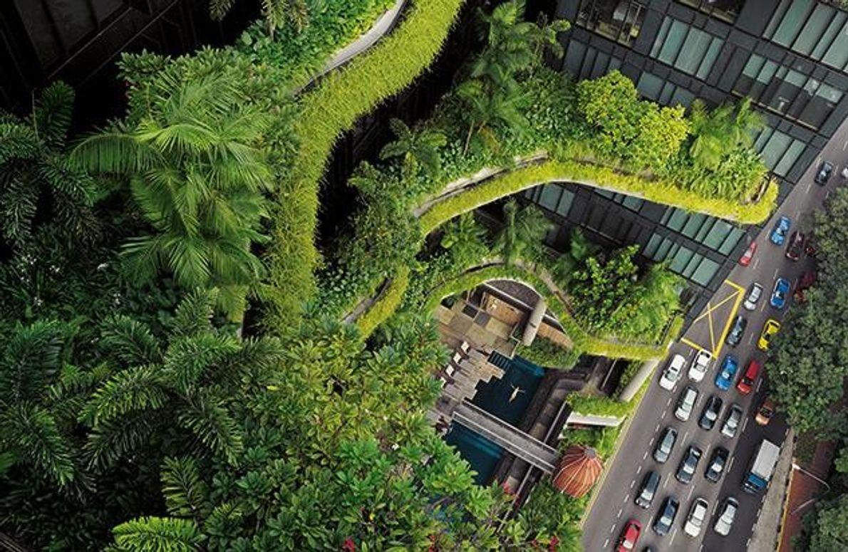 Stadt im Garten