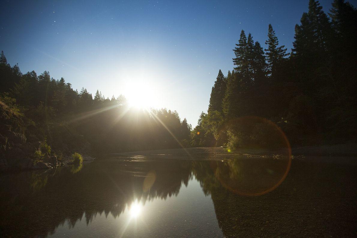 Der Vollmond geht über dem Eel River im Humboldt Redwood State Park auf. Die über 1.000 ...